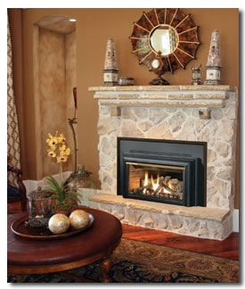 fireplace insert for warmth and efficiency