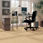carpet in home office