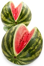 How to Plant and Grow Melons