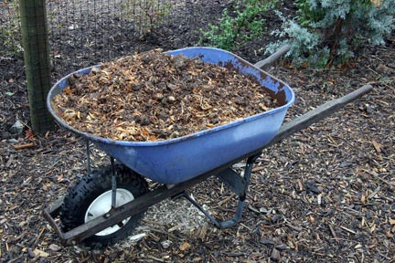Amending the soil is key to successful vegetable gardening.