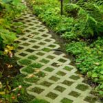 garden paving blocks with plants