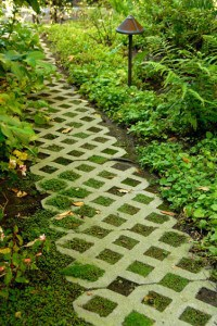 Living garden path is made from concrete pavers designed for planting.