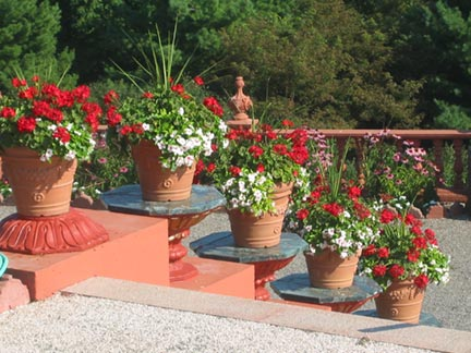 Drainage & Soil Mixtures for Container Plants