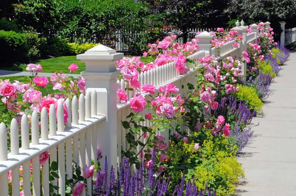 round picket fence with flowers