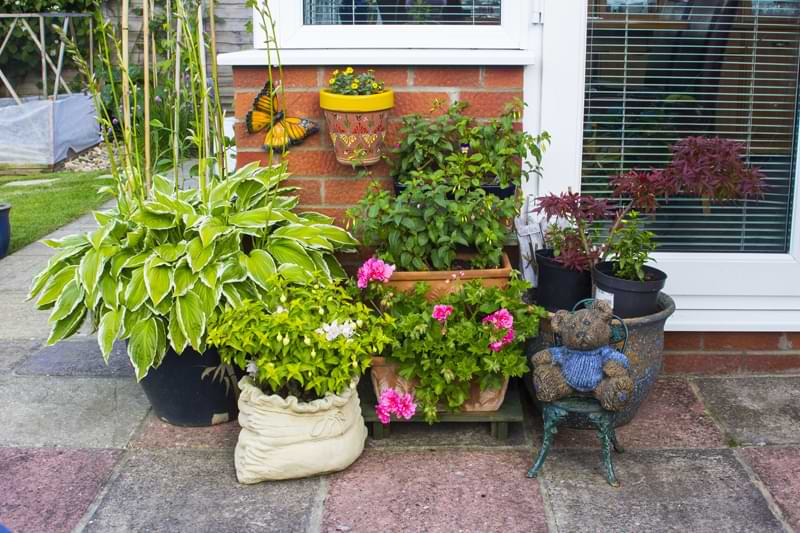 A container garden of potted plants outside a patio door.