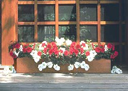 cedar window box with red and white flowers sitting on window sill