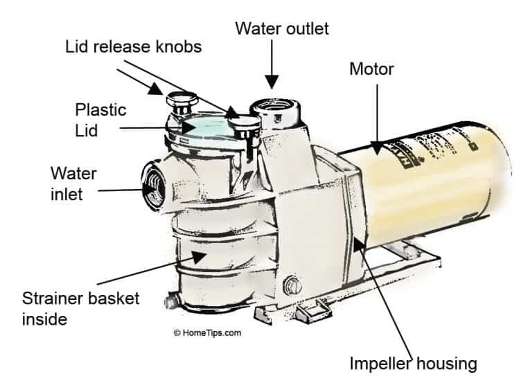 Swimming Pool Pump Diagram