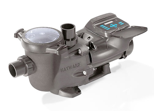 Swimming Pool Pump Buying Guide on