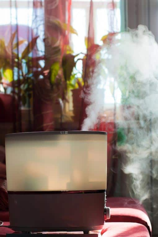 Steam-mist humidifier emits a fine, moist mist into room air.