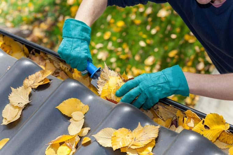 cleaning leaves from rain gutter