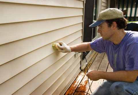 brush cleaning vinyl siding