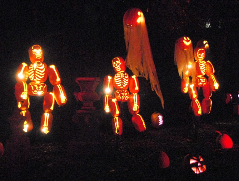 carved skeleton pumpkins