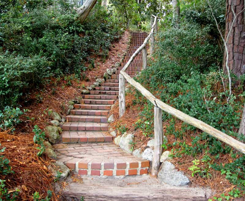 A brick staircase in a forested area.