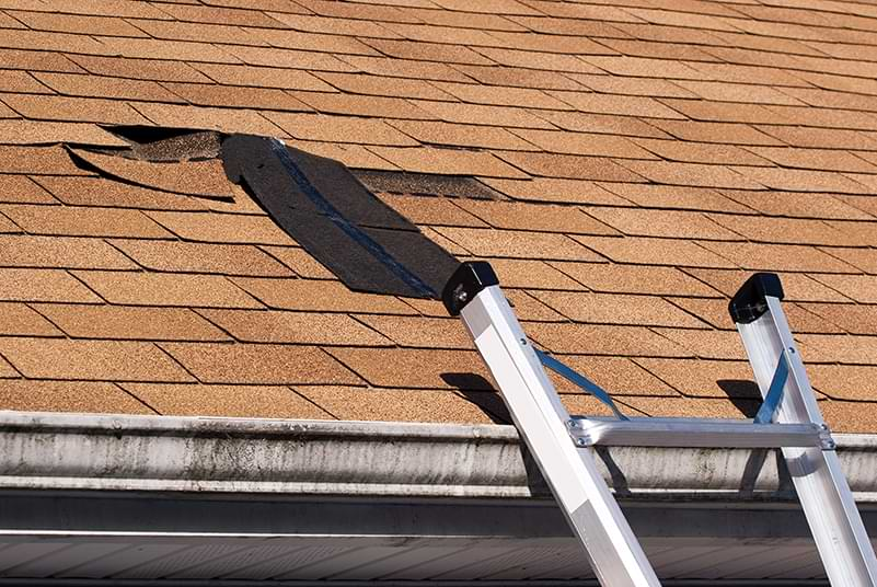 Damaged asphalt roofing shingles and the top of a ladder.